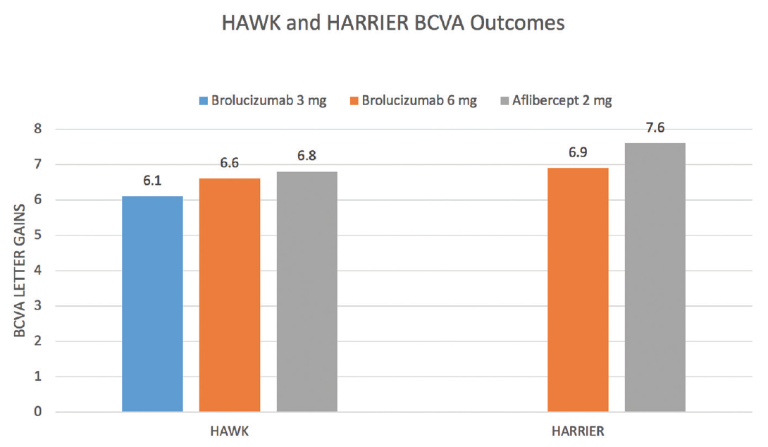 <p>Figure 1. Patients in HAWK and HARRIER demonstrated no statistically significant difference in BCVA gains over the course of the study comparing brolucizumab 3 mg, brolucizumab 6 mg, and aflibercept 2 mg. This occurred despite more than half of patients receiving brolucizumab 6 mg at 12-week dosing compared with 8-week dosing in the aflibercept arm.</p>