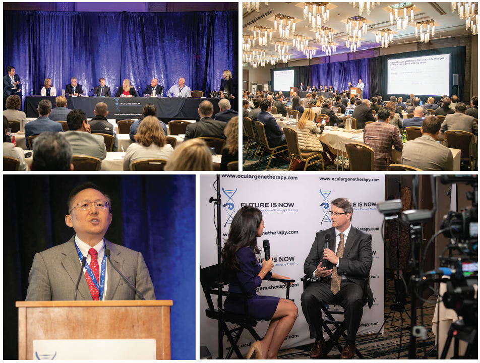 <p>The Future Is Now: Leaders in Ocular Gene Therapy Meeting packed the house before this year's AAO Annual Meeting. EyewireTV was on location to interview a number of speakers from the event. Visit Eyetube to see Eyewire's Ranna Jaraha conduct interviews from the meeting floor.</p>