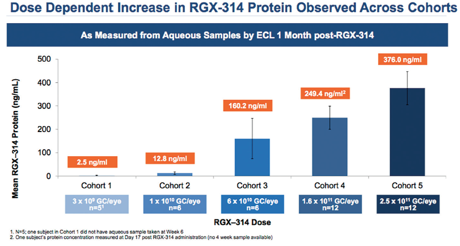 <p>Figure 1. A dose-related increase in RGX-314 protein was noted in the phase 1/2a clinical trial, with patients in cohort 5 showing the highest protein expression.</p>